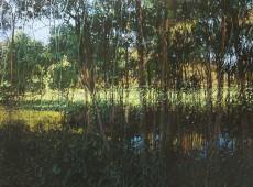 Freddy's Creek