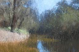 Spring Fall – Blackwood River