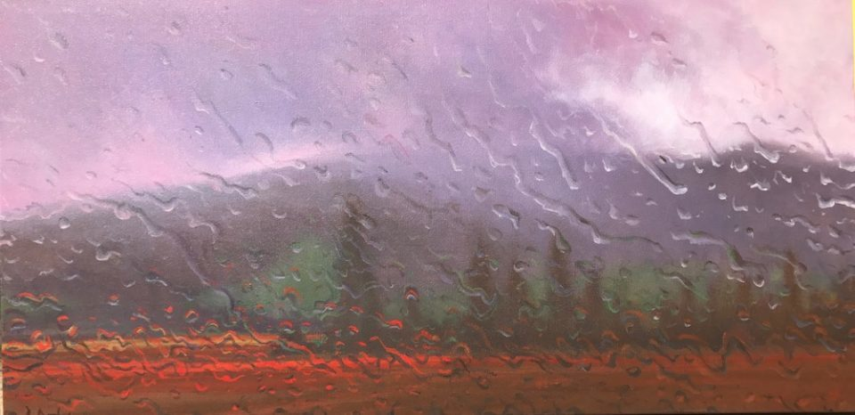 """""""Poplars and Poppies"""" Oil on Canvas 60 x 122cm"""