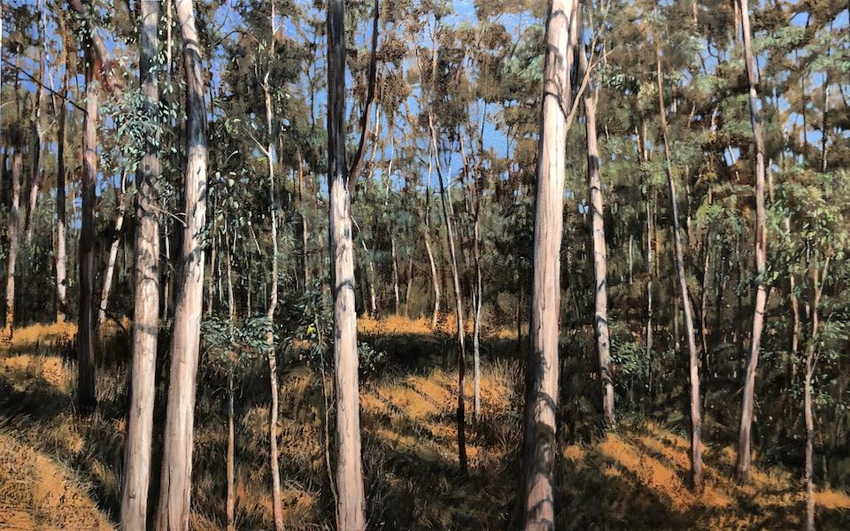 """""""Golden Whistler"""" Oil on Canvas 110 x 170cm"""